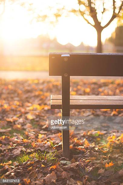 the bench - jcbonassin stock pictures, royalty-free photos & images