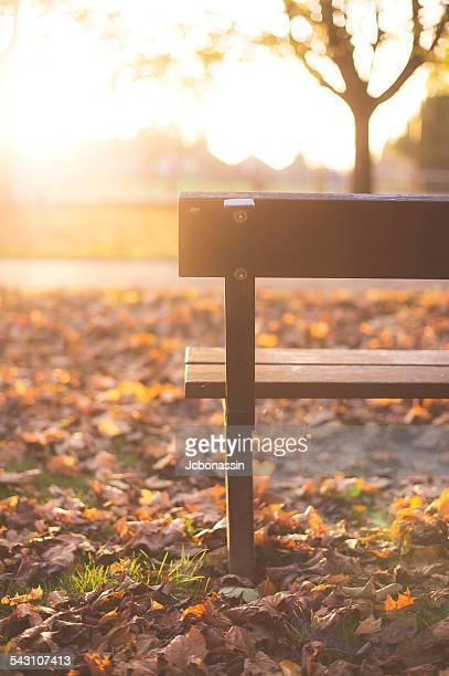 the bench - jcbonassin stock-fotos und bilder