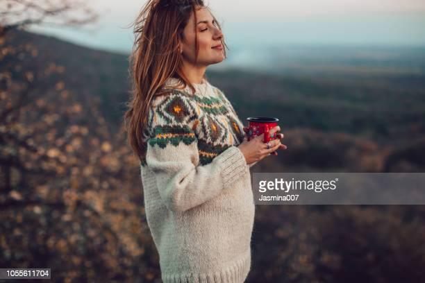 the best comfort on a cold day - chá bebida quente imagens e fotografias de stock