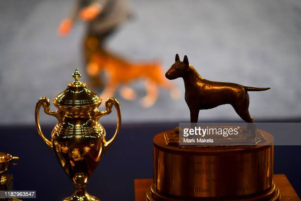 The Best in Show trophy is positioned ring side as dogs compete during the National Dog Show held at the Greater Philadelphia Expo Center on November...