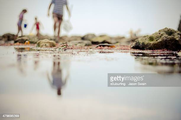 the best things in life are free - totland bay stock pictures, royalty-free photos & images