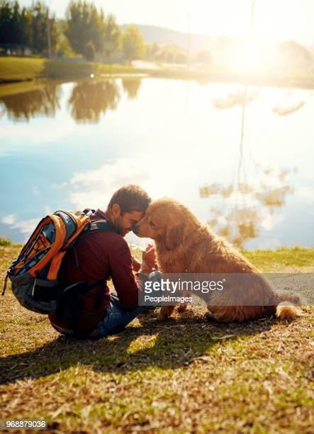 le meilleur traitement que vous pouvez donner à votre chien est l'amour - animaux domestiques photos et images de collection