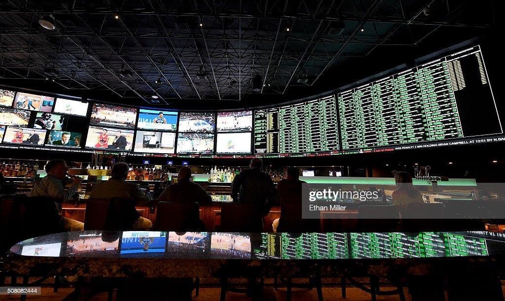 Super Bowl 50 Proposition Bets At The Westgate Las Vegas Race & Sports SuperBook : ニュース写真