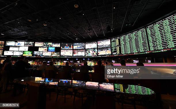 Vegas bets on super bowl 50 bus oberbettingen hillesheim duitsland