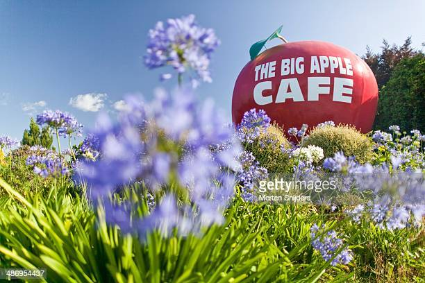 'The Big Apple Cafe' mascot welcoming sign seen from the highway through purple flowers, in Otorohanga, Waikato.