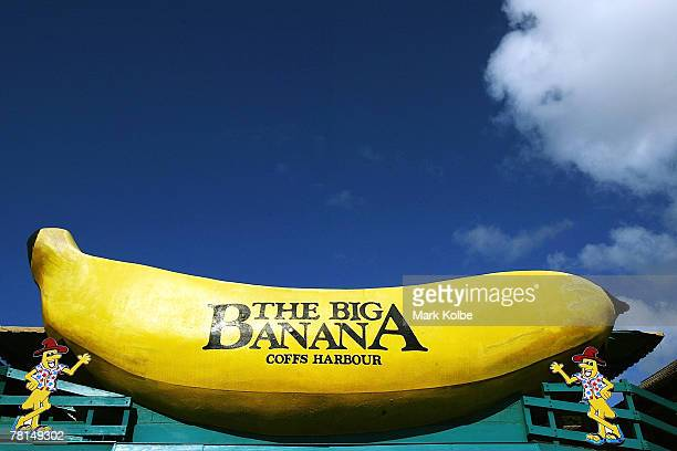 The Big Banana is seen on February 25 2006 in Coffs Harbour Australia There are now close to 150 Big Things around Australia The trend began with the...
