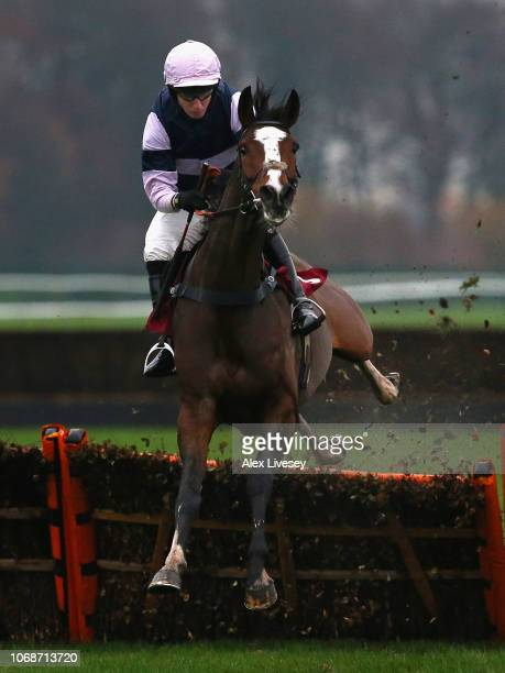 The Big Bite ridden by Noel Fehily jumps a fence on their way to victory in The Watch Racing UK In Stunning HD 'Introductory' Hurdle Race at Haydock...