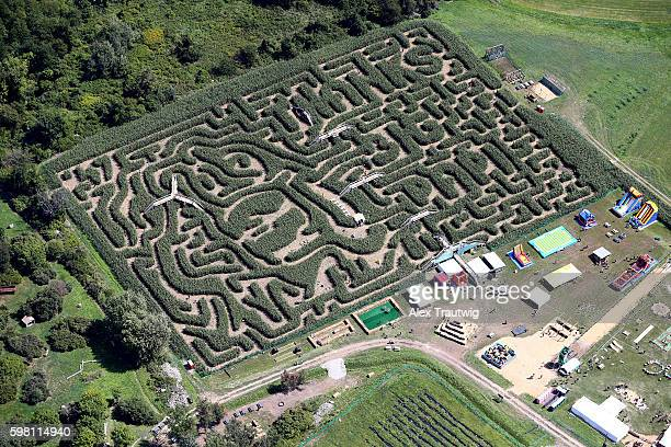 'The Big Papi Maze' honoring David Ortiz of the Boston Red Sox is seen at the Davis Mega Maze on Tuesday August 30 2016 in Sterling Massachusetts