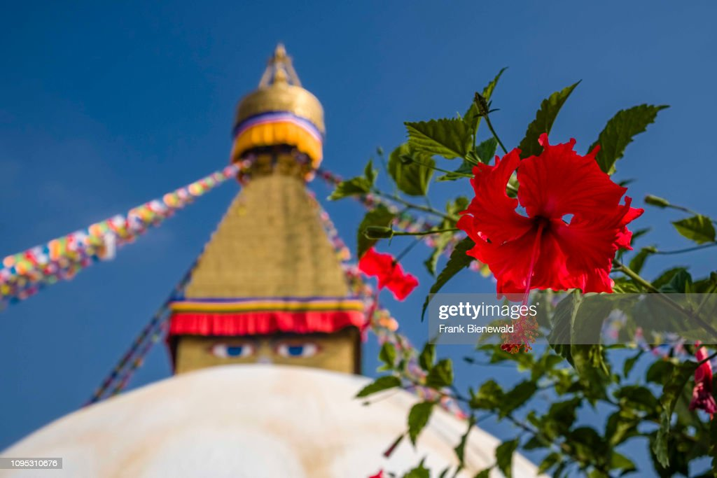 The big stupa with fluttering prayer flags in the suburb