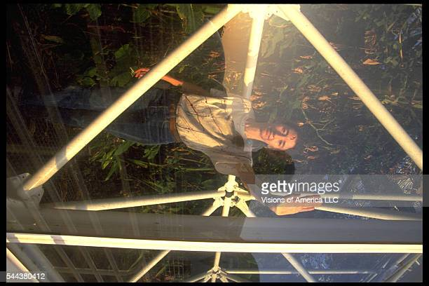 The Biospherian Linda Leigh as seen through one of the glass panels of the enclosed ecosystem Biosphere 2 in Oracle, Arizona, September 26, 1991.