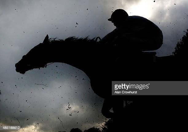 The birch flies off the fence as a runner clears it at Fontwell racecourse on August 25 2015 in Fontwell England