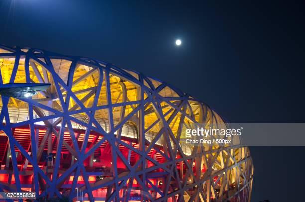 the bird nest - stadio olimpico nazionale foto e immagini stock