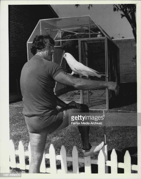 The Birdman of Long Bay Ron the birdman of Long Bay tends to Dodo the first bird to take residence in the jail aviaryRon is pictured around the...