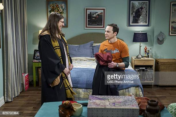 The Birthday Synchronicity Pictured Amy Farrah Fowler and Sheldon Cooper Howard and Bernadette welcome their new baby and Sheldon and Amy celebrate...