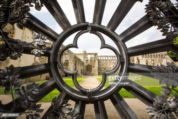 the bishops palace at st davids cathedral in st davids, pembrokeshire, wales, uk. - st davids stock pictures, royalty-free photos & images
