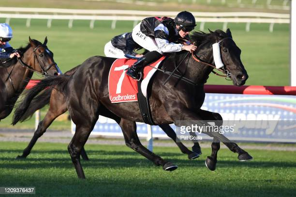 The Black Leopard ridden by Will Price wins the Ladbrokes Odds Boost Multi Handicap at Ladbrokes Park Lakeside Racecourse on April 08, 2020 in...