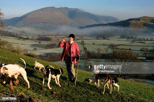 The Blencathra pack which hunts for foxes in Cumbria using fell hounds and many of whose livelihoods are threatened by the proposed ban on hunting...