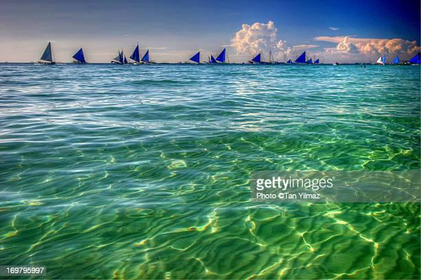 The Blue Flotilla