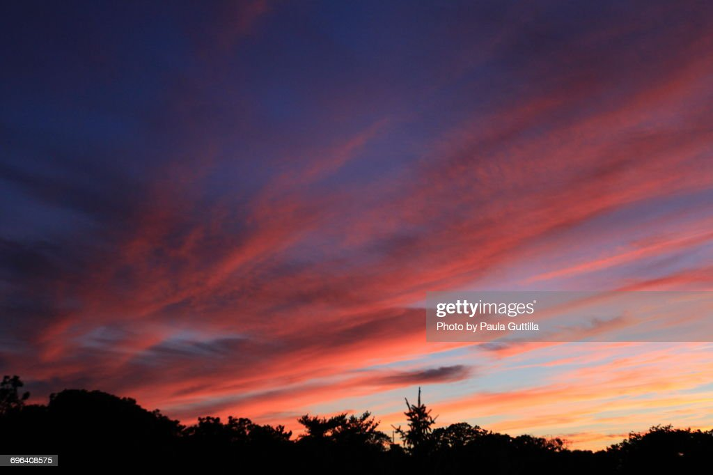 The Blue Hour : Stock Photo