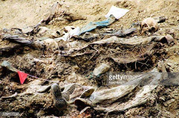 The bodies of dozens of Bosnian Moslem men lie at the bottom of a mass grave outside the Bosnian village of Srebrenica Bosnia on Wednesday June 12...