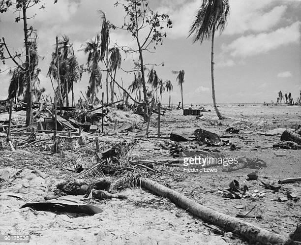 The bodies of Japanese soldiers killed in an American attack during the Battle of Tarawa a Pacific atoll in the Gilbert Islands 20th23rd November 1943