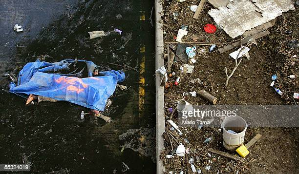 The body of a drowning victim is seen on a wet road September 9 2005 in New Orleans Louisiana FEMA has asked the news media not to publish...