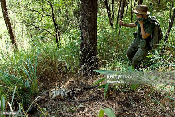 The body of a porter used by the Burmese army showing a bullet hole in the back is found abandoned in the Northern Karen State jungle According to...