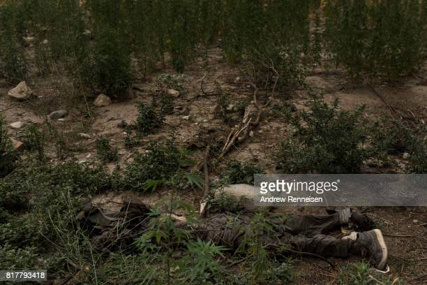 The body of an ISISK fighter killed by an airstrike lays on the ground a few hundred meters from where the GBU43/B Massive Ordnance Air Blast...