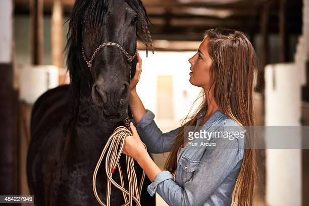 The bond between horse and rider