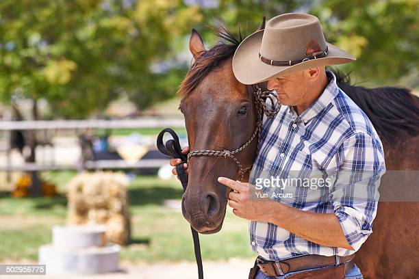 The bond of rider and horse