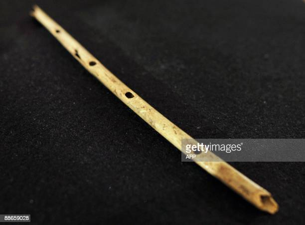 The bone flute from Hohle Fels is presented to journalists on June 24 2009 in the southern German city of Tuebingen Excavations in the summer of 2008...
