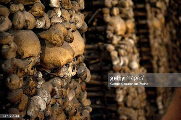 The bones of the Capuchin monks decorate the wall of the crypt during the opening of the museum in the Capuchin convent of the Immaculate Conception...