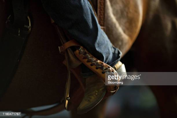 The boot of a contestant sits in a stirrup on a horse during a Future Farmers of America barrel racing event at the Iowa State Fair in Des Moines...