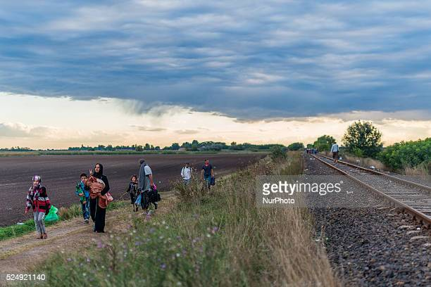 the border is open and families walks inside Hungary on September 6 2015 Serbian and Hungarian border Ulrik Pedersen/NurPhoto
