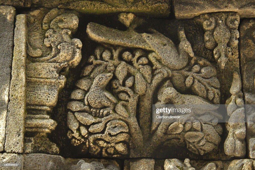 The Borobudur Relief : Stock Photo