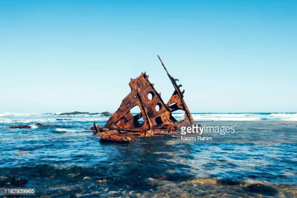 the bow of shipwreck ss speke, surrounded by water on a sunny day, phillip island, australia - bass strait stock pictures, royalty-free photos & images