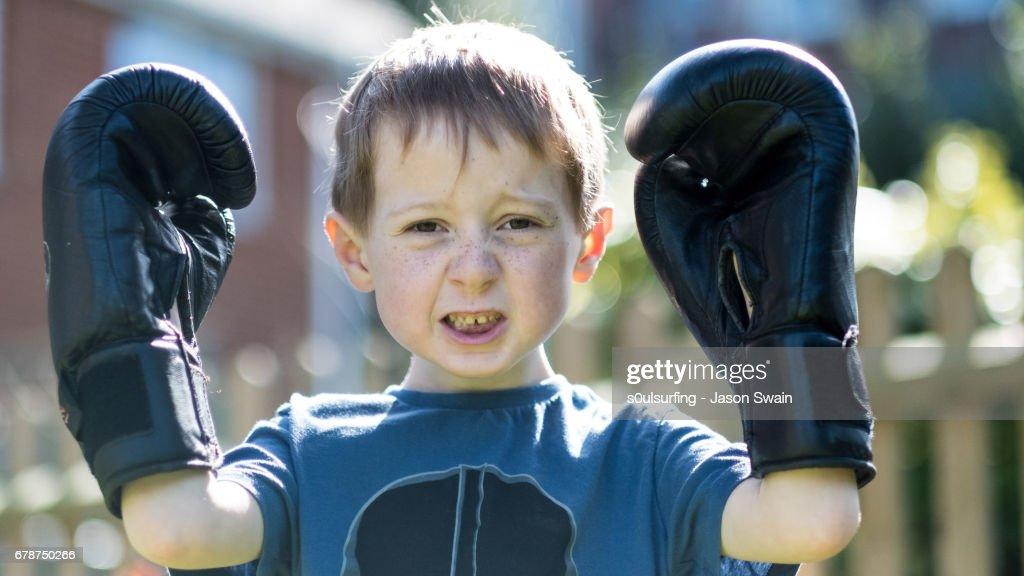 The Boxer : Stock Photo