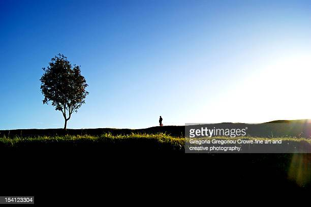the boy and the tree - gregoria gregoriou crowe fine art and creative photography fotografías e imágenes de stock