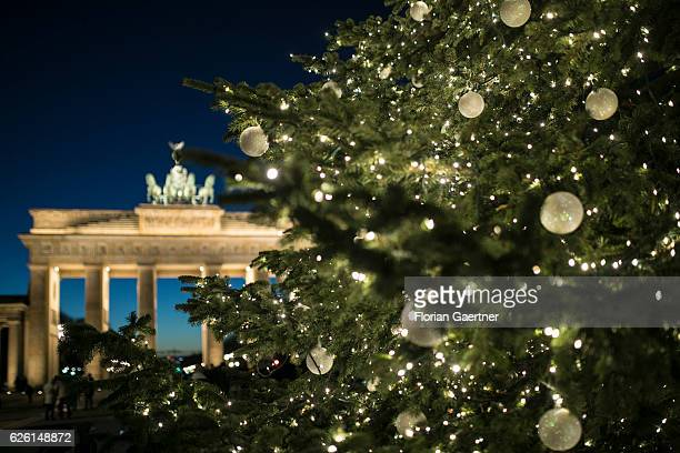 The Brandenburg Gate is pictured behind a christmas tree on November 27 2016 in Berlin Germany