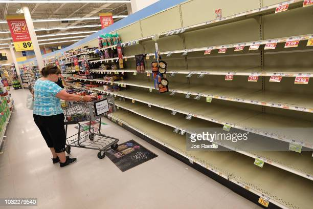 The bread shelves are bare in a grocery store as people stock up on food ahead of the arrival of Hurricane Florence on September 12, 2018 in Myrtle...
