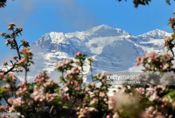 The Brenta Dolomites , Trentino-Alto Adige, Italy.