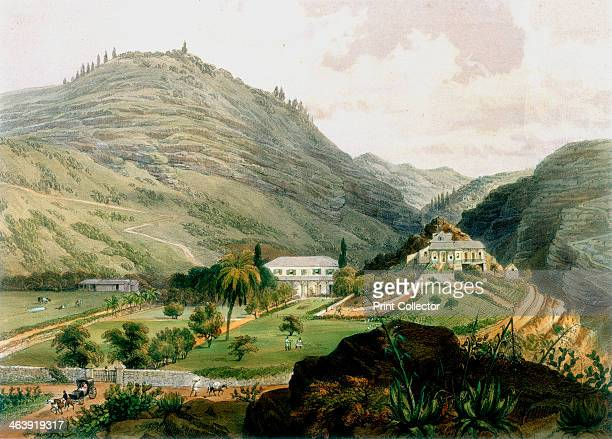The Briars, St Helena, early 19th century . After his voyage into exile on St Helena in 1815, Longwood, the house Napoleon was to occupy, was not...
