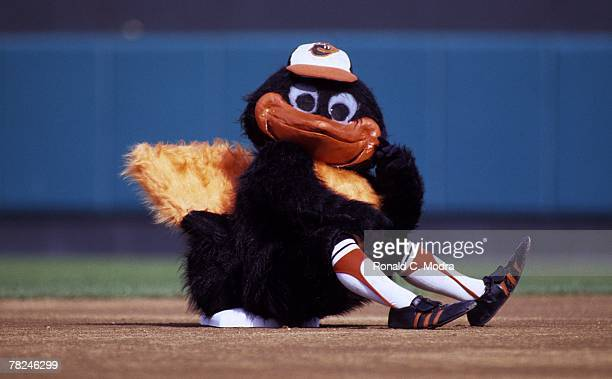 The Brid team mascot of the Baltimore Orioles at second base during the American League Championship Series against the Chicago White Sox on October...