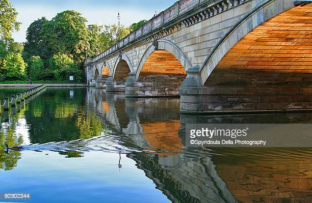 The bridge, hyde park, reflections, duck swimming