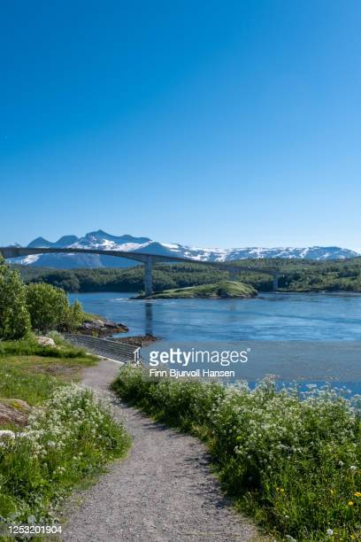the bridge of saltstraumen near bodø in northern norway - finn bjurvoll stock pictures, royalty-free photos & images