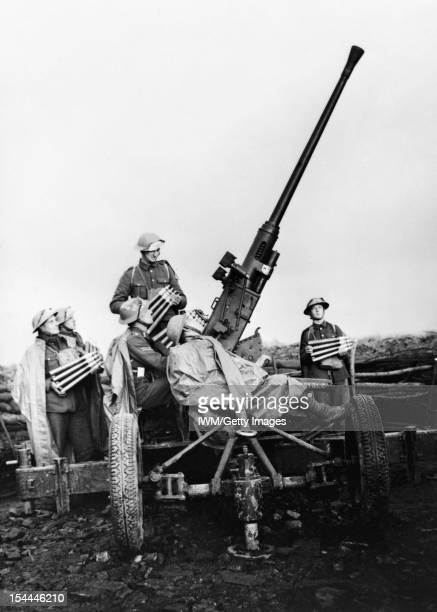 The British Army In France 1939 A 40mm Bofors antiaircraft gun and crew near Douai November 1939