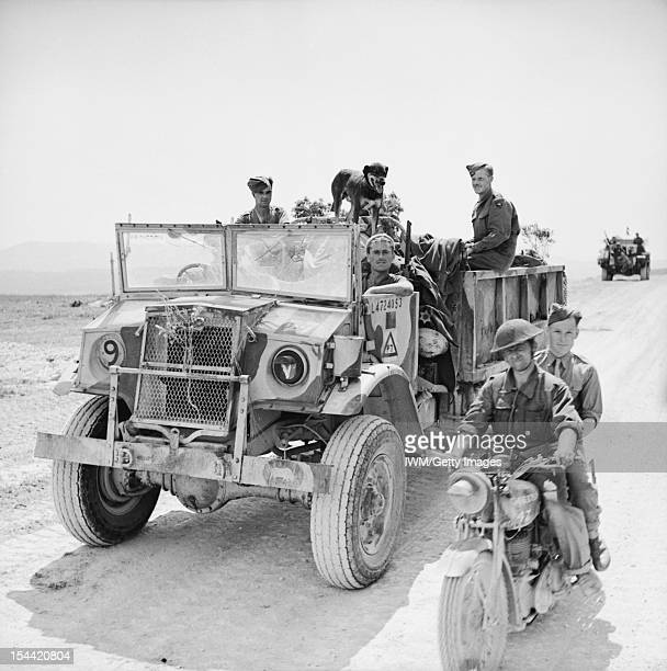 The British Army In Tunisia 1943 An opentopped CMP truck and motorcycle of 11th Royal Horse Artillery 1st Armoured Division 22 April 1943