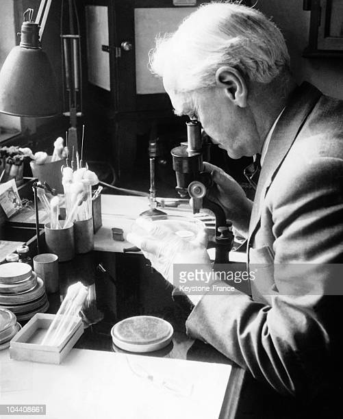 The British microbiologist Alexander FLEMING in his laboratory in London SainteMarie hospital This scientist discovered penicillin in 1951