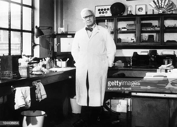 The British microbiologist Alexander FLEMING in his office in London around 1950 He received the Nobel Medecine Prize in 1945 for the discovery of...