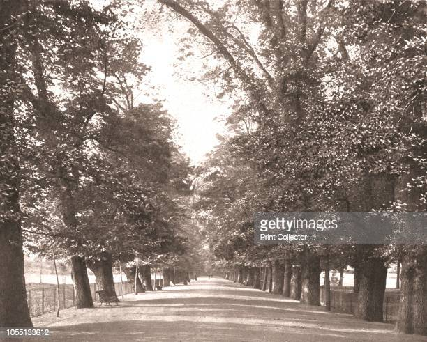 The Broad Walk Oxford 1894 Elm avenue in Christ Church Gardens and Meadow dating from at least the mid seventeenth century From Beautiful Britain...